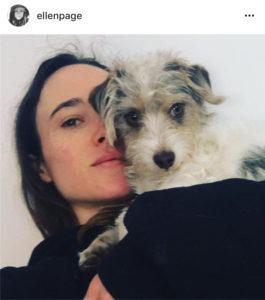 Ellen Page dog